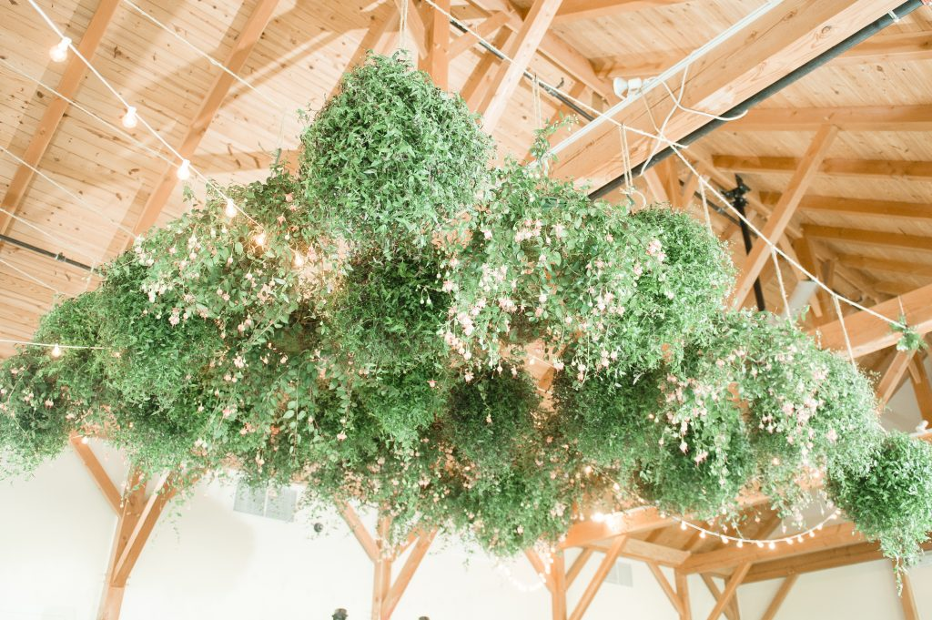 Summer wedding, coral, blush, white, greenery, roses, succulants, eucalyptus, cloches, greenery chandelier